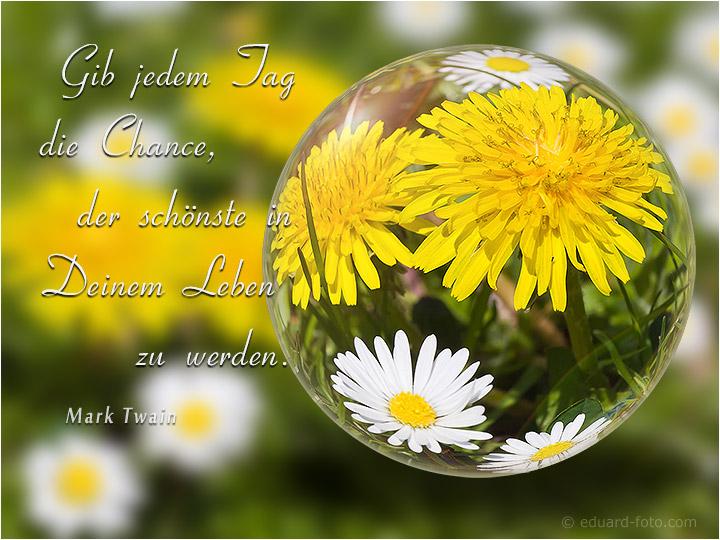 Christliche zitate aus dem leben - Christliche zitate ...